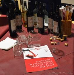 seminario_promozione_cultura_del_vino00012