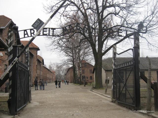 Auschwitz Birkenau_00001