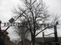 Auschwitz Birkenau_00002