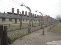 Auschwitz Birkenau_00003
