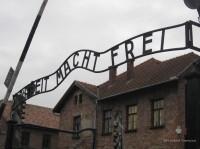 Auschwitz Birkenau_00005