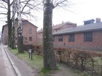 Auschwitz Birkenau_00006