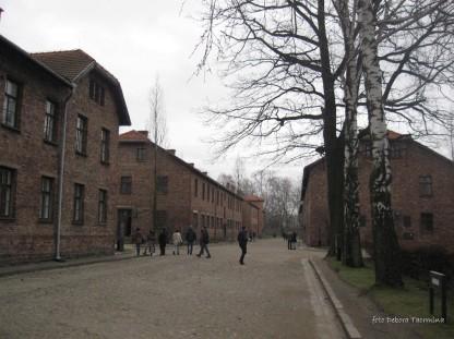 Auschwitz Birkenau_00007