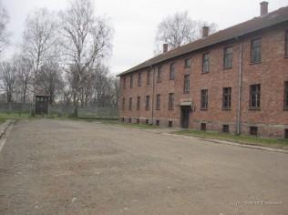 Auschwitz Birkenau_00017