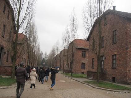 Auschwitz Birkenau_00018