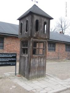 Auschwitz Birkenau_00029