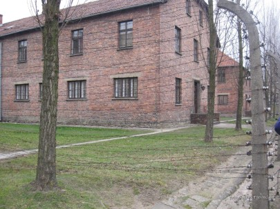 Auschwitz Birkenau_00030