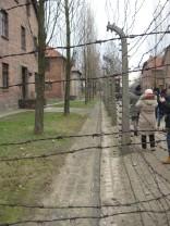 Auschwitz Birkenau_00031
