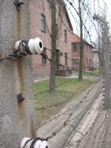 Auschwitz Birkenau_00032