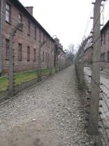 Auschwitz Birkenau_00033