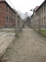 Auschwitz Birkenau_00034
