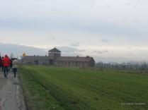 Auschwitz Birkenau_00042