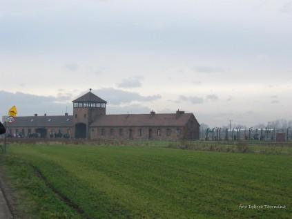 Auschwitz Birkenau_00043