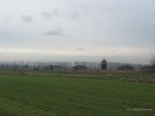 Auschwitz Birkenau_00044