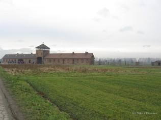 Auschwitz Birkenau_00045