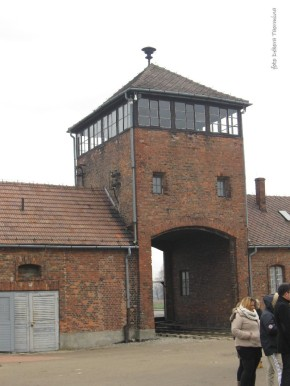 Auschwitz Birkenau_00049