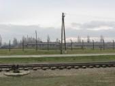Auschwitz Birkenau_00050
