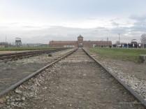 Auschwitz Birkenau_00054