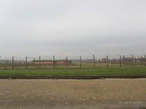 Auschwitz Birkenau_00056