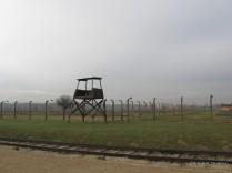 Auschwitz Birkenau_00058
