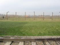 Auschwitz Birkenau_00060