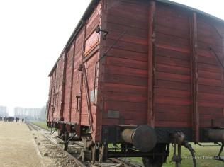 Auschwitz Birkenau_00062