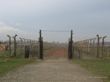 Auschwitz Birkenau_00064