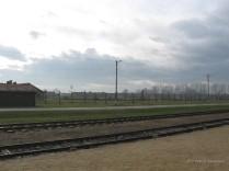Auschwitz Birkenau_00065