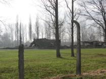 Auschwitz Birkenau_00066