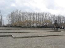 Auschwitz Birkenau_00067
