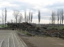 Auschwitz Birkenau_00069
