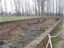 Auschwitz Birkenau_00070