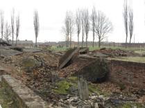 Auschwitz Birkenau_00071