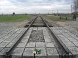 Auschwitz Birkenau_00074