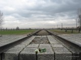 Auschwitz Birkenau_00075